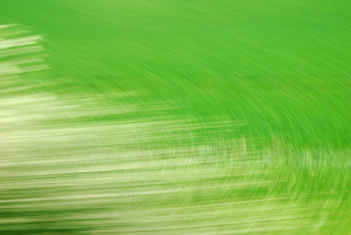 abstrakte Fotokunst, grüne Kreislinien und weiße horizontale Linien, entstanden duch das Fotografieren von Landschaft im Vorbeifahren