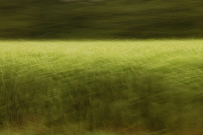 abstract photo art, a field turned into a pattern of different shades of green by motion blur