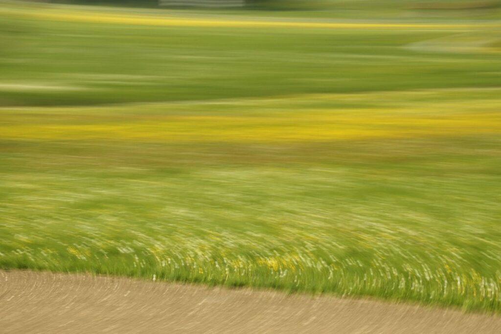 durch Bewegung verfremdete Landschaftsfotografie, verwischte Felder und Wiesen mit Löwenzahn und Pusteblumen (nur durch die Farben zu erkennen)