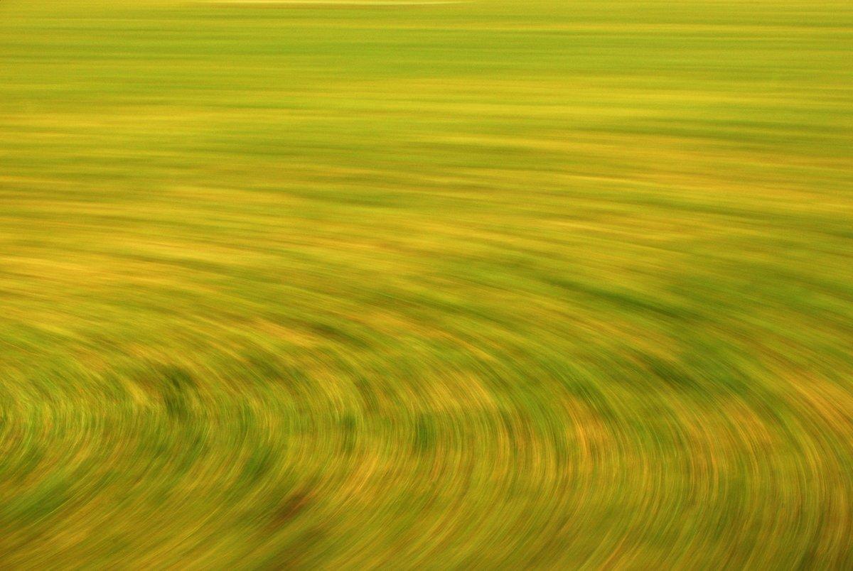 abstrakte Fotokunst, gelbe und grüne Kreismuster, entstanden durch Kamerabewegung bei der Fotografie einer vorüberziehenden Löwenzahnwiese