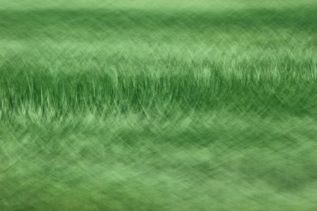 abstract photography, green patterns created by motion blur
