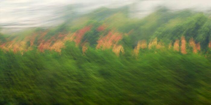 abstrakte Landschaftsfotografie mit Bewegungsunschärfe, eine hauptsächlich grüne Fläche aus verwischtem Blattwerk wird durch eine horizontale gelb-rote Linie begrenzt