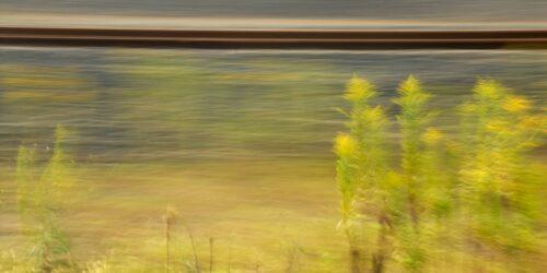 experimentelle Landschaftsfotografie, leicht verwischte gelb blühende Staude (Goldrute) vor stark verfremdetem Hintergrund, in dem Bahngleise zu erahnen sind
