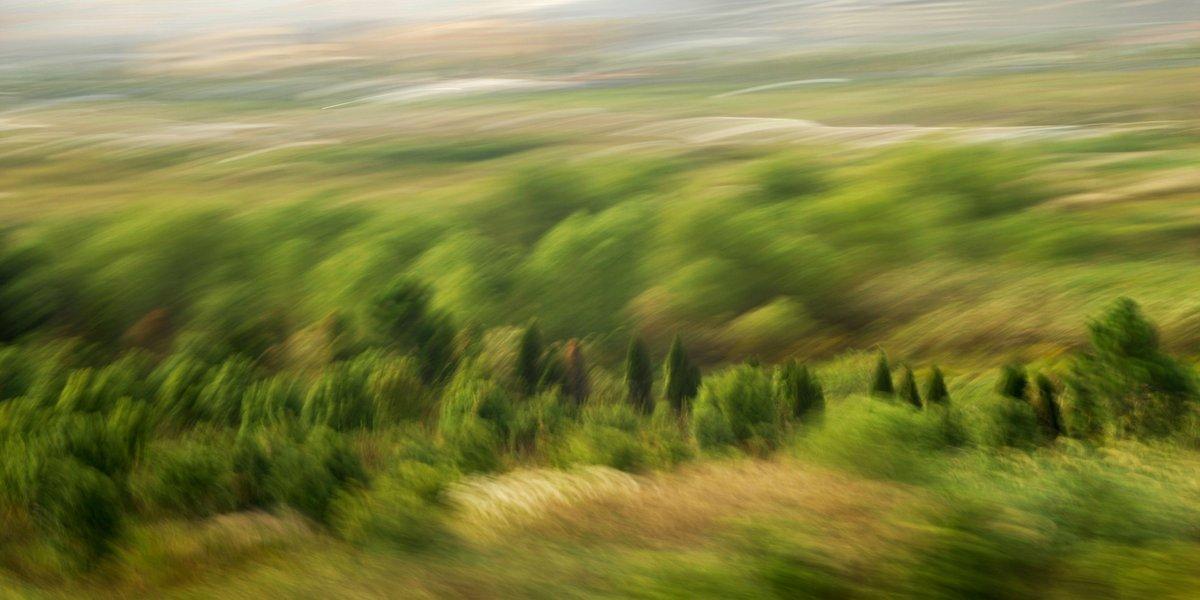 Landschaftsfotografie in Bewegung, eine Heidelandschaft mit starker Bewegunsunschärfe im Vordergund und HIntergrund und deutlcih erkennbaren Bäumchen in der mittleren Distanz