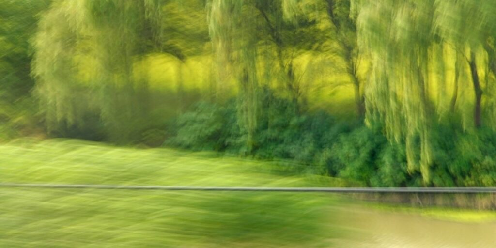 experimental photo art, a blurry green landscape