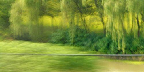 experimentelle Fotokunst, bewegungsunscharfe Auenlandschaft hinter einem Geländer, helle Grüntöne