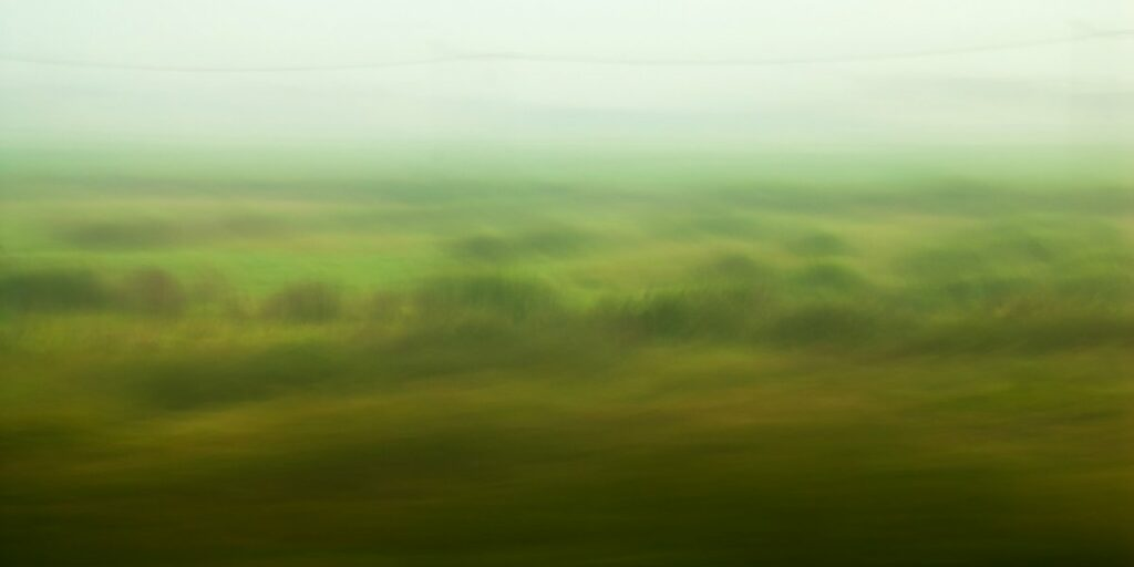experimental photo art, a blurry and misty green landscape