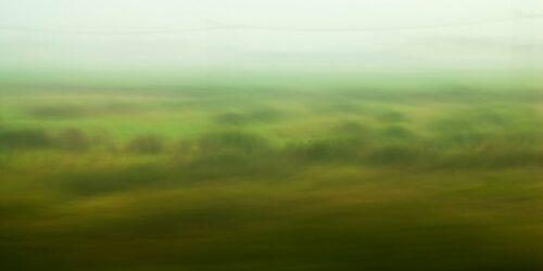 verwischte Landschaftsfotografie, ein Nebelmorgen in pastelligen Grün- und Brauntönen, mit leichtre Bewegungsunschärfe
