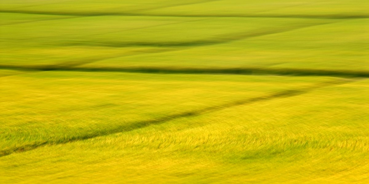experimental photo art, a yellow landscape turned into patterns of rhombi by motion