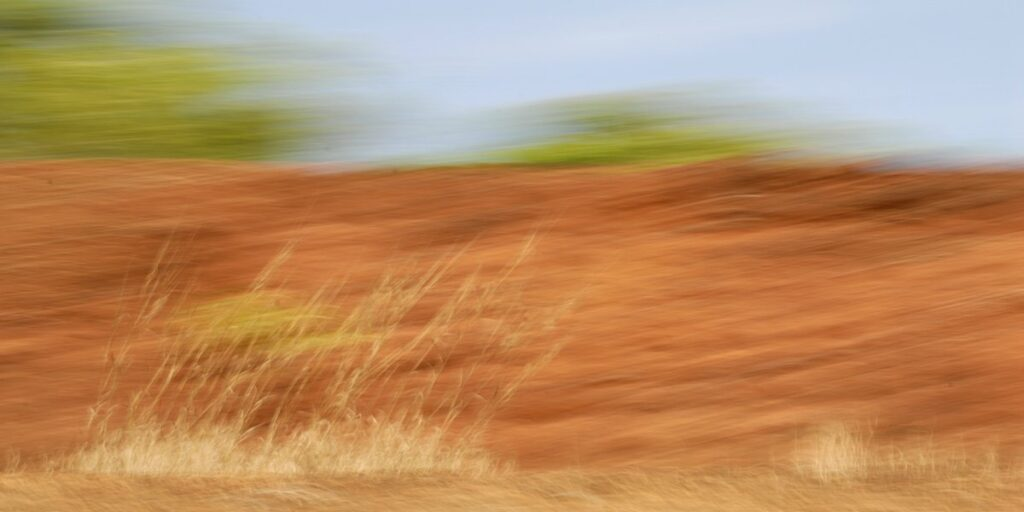 landscape photography wiht stron motion blur. Red earth, green treetops and golden grass blur into a composition colours and textures