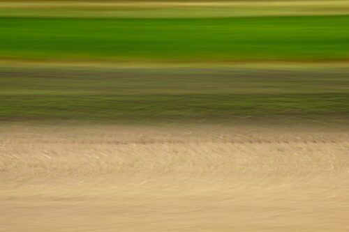 abstract photo art, a field in different shades of green and brown, turned into a pattern and colour gradienst by motion blur
