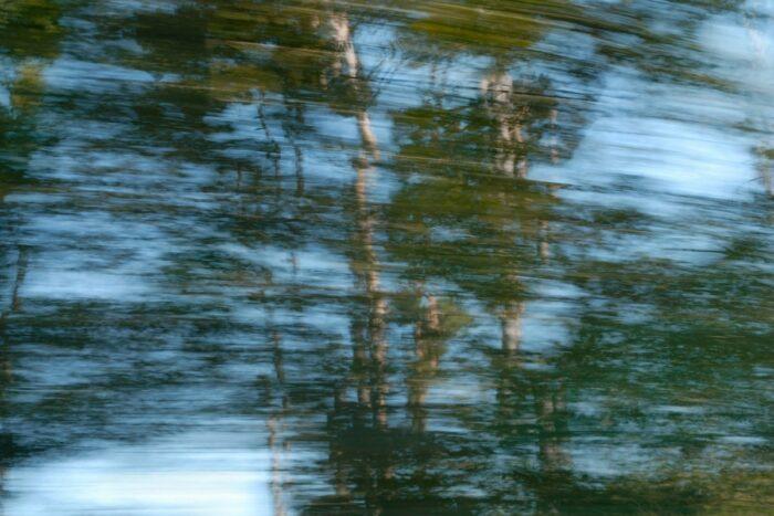 durch Bewegung verfremdete Fotografie von Bäumen vor Himmel