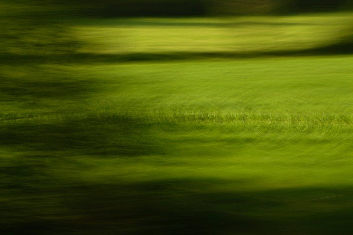 abstrat photo art, green circles and dark shadows