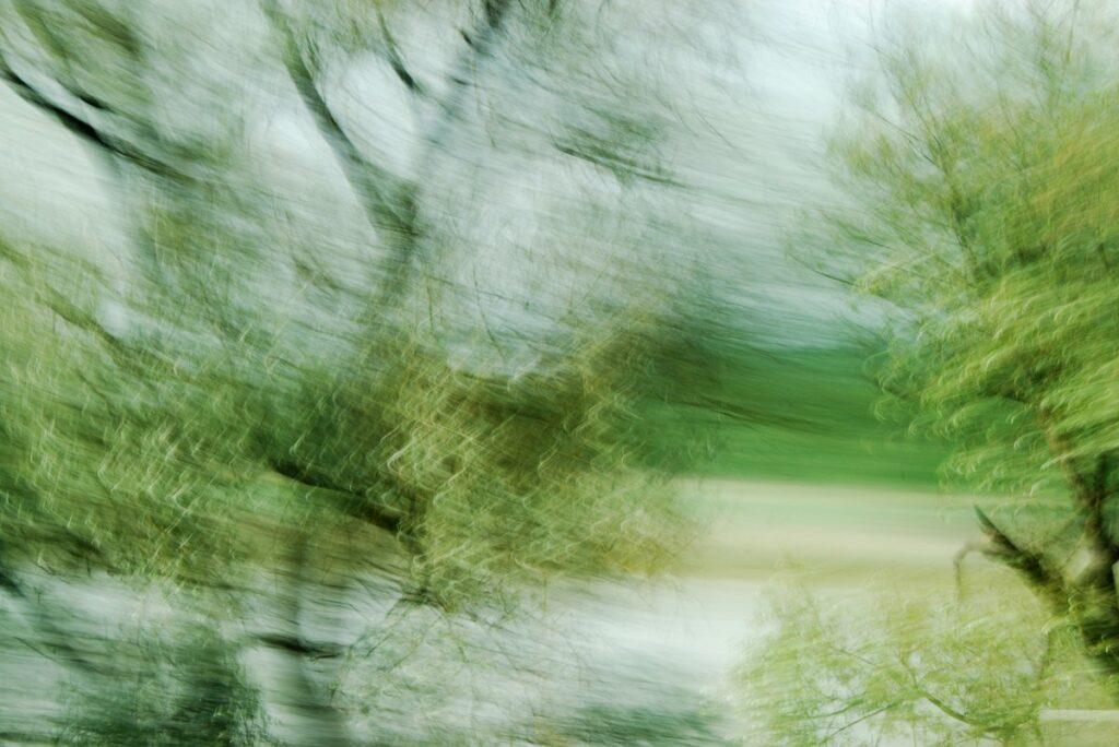 duch Bewegung verfremdete Fotografie von Bäumen am Flußufer
