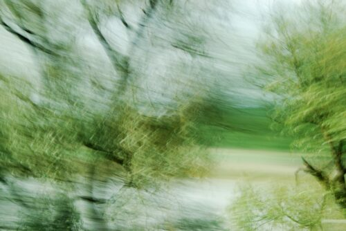 experimental photo art, treetops in different shades of green turned half transparent by motion blur