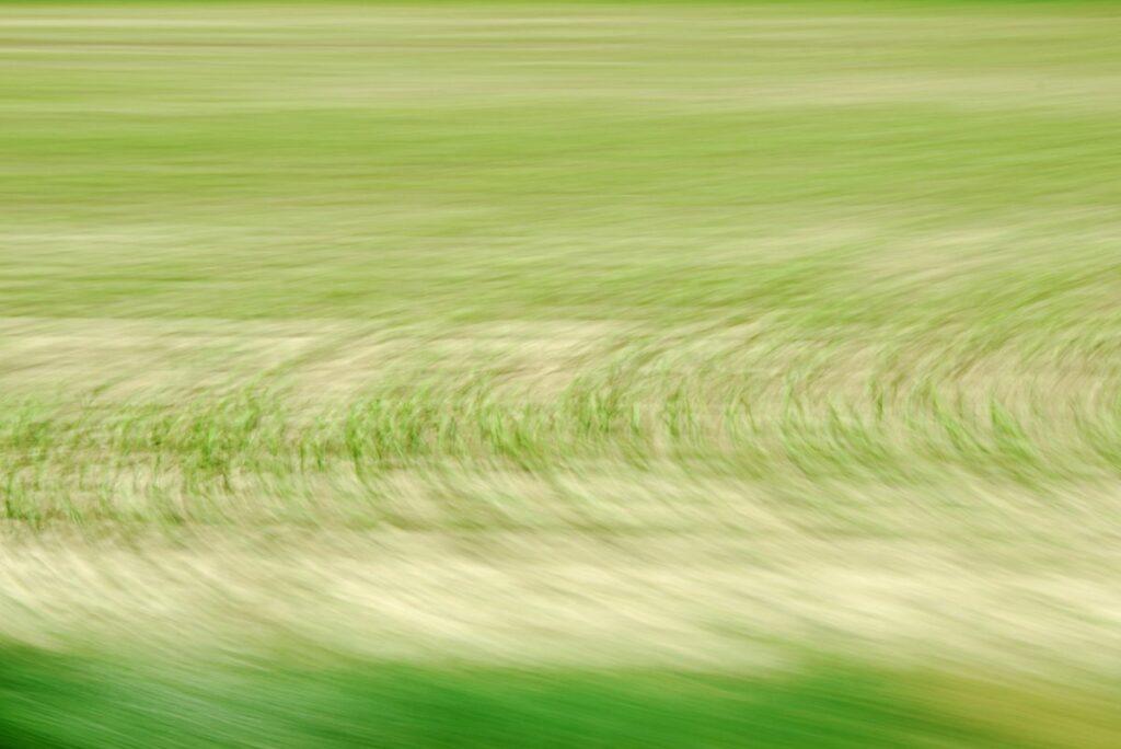 abstrakte Landschaftsfotografie, durch Bewegung entstandene Kreismuster in grün und hellbraun