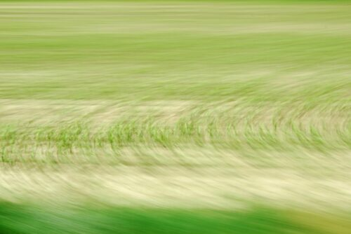 abstract photo art, young green on a field turned into circular pattern by motion and blur