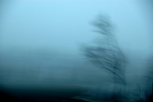 abstract photograph, a lonely tree surrounded by blue fog, blurred by motion