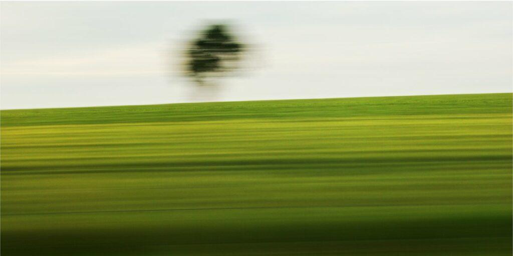 Landschaftsfotografie mit starker Bewegungsunschärfe. Vordergund auf verschiedene Grüntone reduziert, vor dem hellgrauen Himmel hebt sich eine verwischte Baumkrone ab