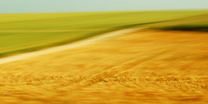 a golden field and a green field seperated by a country lane, turned soft by motion blur