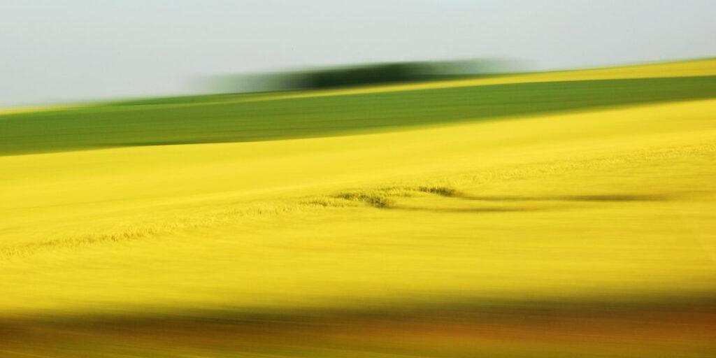 Landschaft in Bewegung, verwischtes gelbes Rapsfeld mit grüner Wiese und Horizont im Hintergrund, ansatzweise erkennbar ist eine dunkle geschwungene Fahrspur in der gelben Fläche